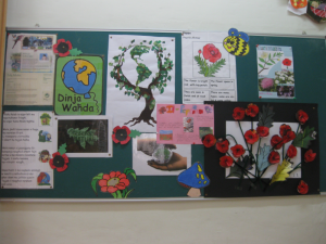 2014-2015: - The pupils in class 2.2 together with Ms L. Ebejer (LSA), Ms A.M. Segona (LSA) and Ms I. Farrugia (Teacher) found out useful information about the poppy.  This information was then displayed on the notice board.