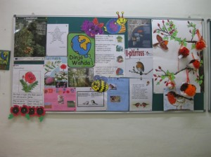 The following is a  picture of our school display.  This display contains relevant information about the work being carried out by the pupils.